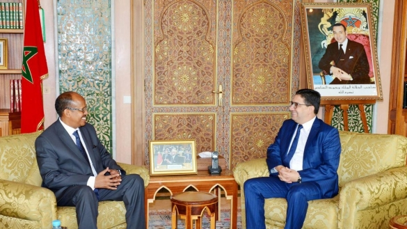 Djibouti expresses full support of Morocco's decision over Guerguerat