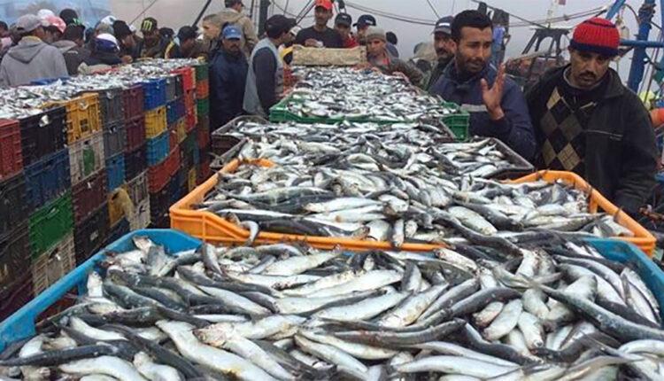 Drop in Coastal and Artisanal Fishing Returns