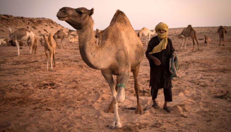 Spain reiterates its stand on the Moroccan Sahara Issue