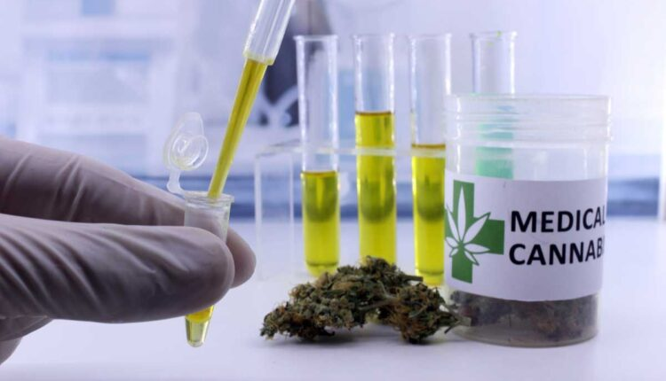 Morocco votes in Favor of Medicinal Cannabis in a Historic UN Vote